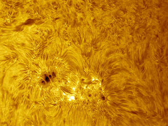 Sunspot10Jan2014-Clrd.jpg