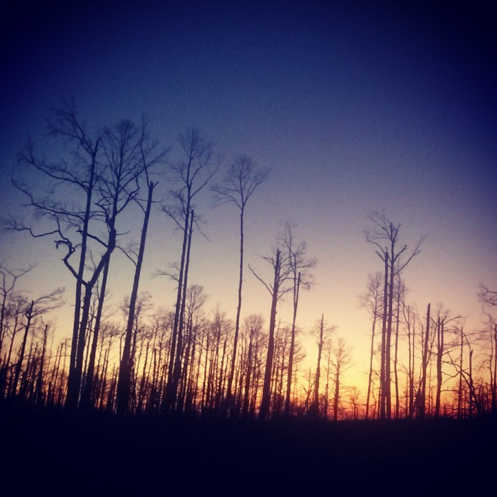 """From my instagram (@bryantacoturner): """"#Sunset beauty, even among the aftermath of #wildfire. Cool to see w/@claireymcturnerwhile talking about if it has been worth it to move away from our comfy life in Austin to work@CampWR. The answer was yes, it has totally been worth it. Our life has been challenging, but SO blessed. And the sunsets are one of those blessings."""""""