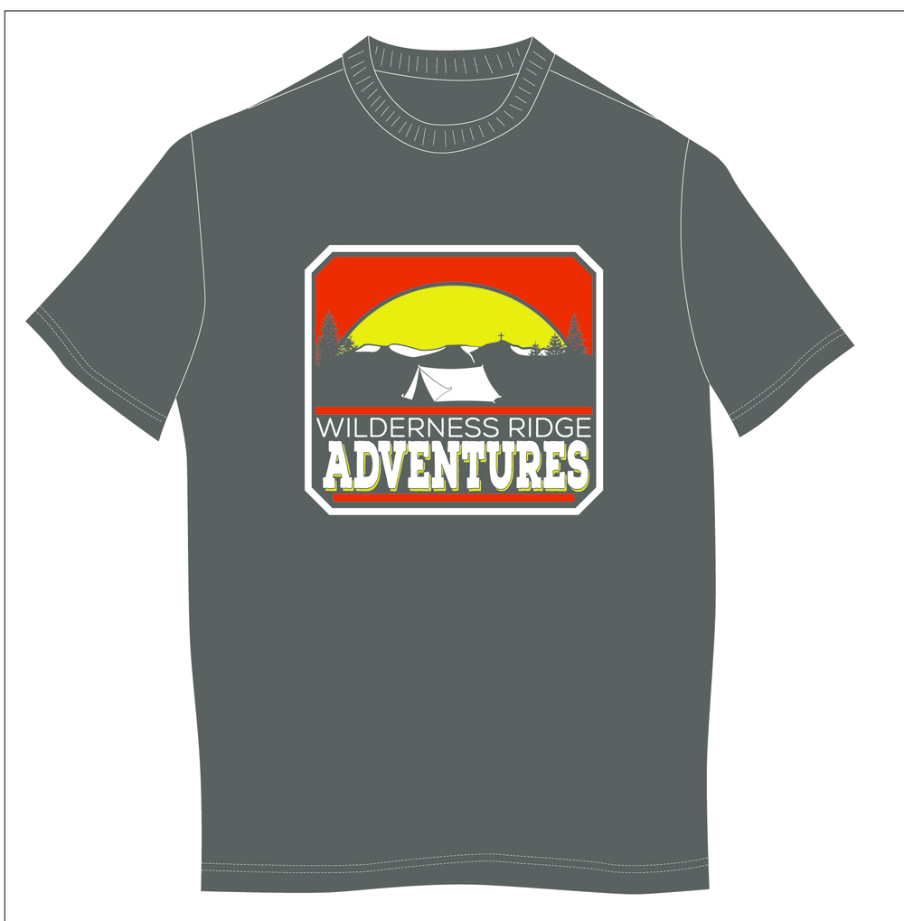 One of 4 t-shirt colors ordered.