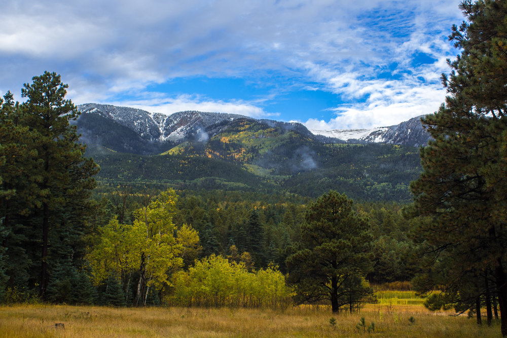 View from the McCall Cabin Porch