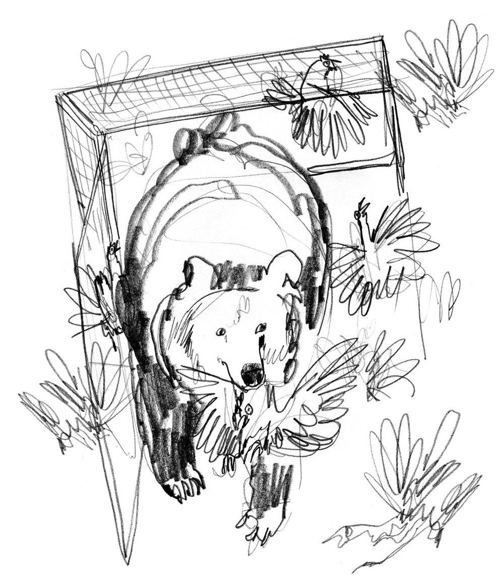Unpublished Sketch