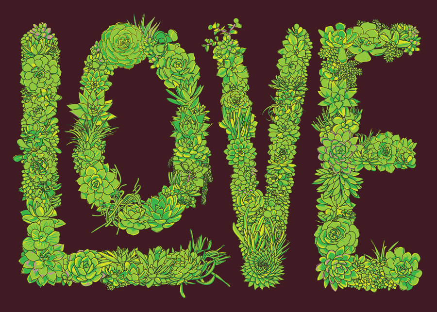 Love Succulents     •    02.04.2013  •    Purchase prints, pillows, &c  .