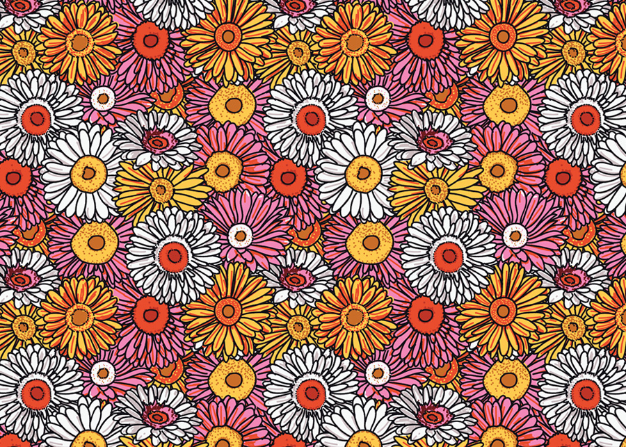 Daisies, En Masse   •    03.18.2013  •    Purchase prints, pillows, &c  .