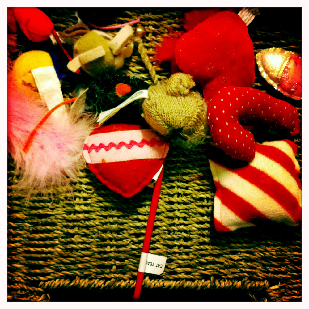 Cat toys from last Christmas — rediscovered while cleaning.