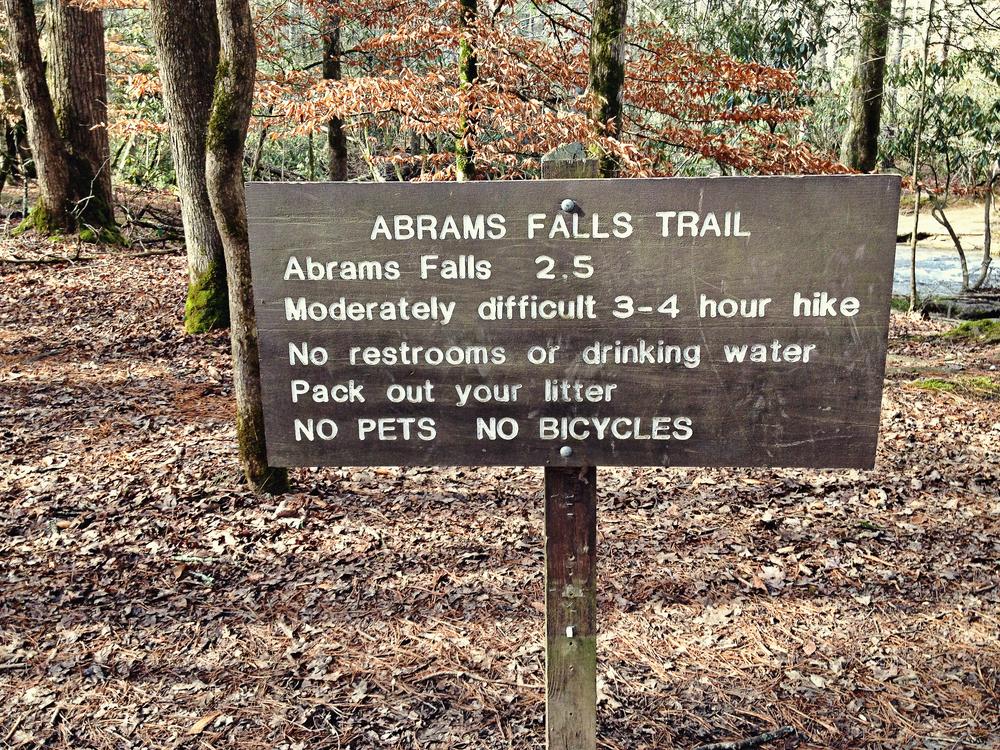 abrams_falls_02.jpg