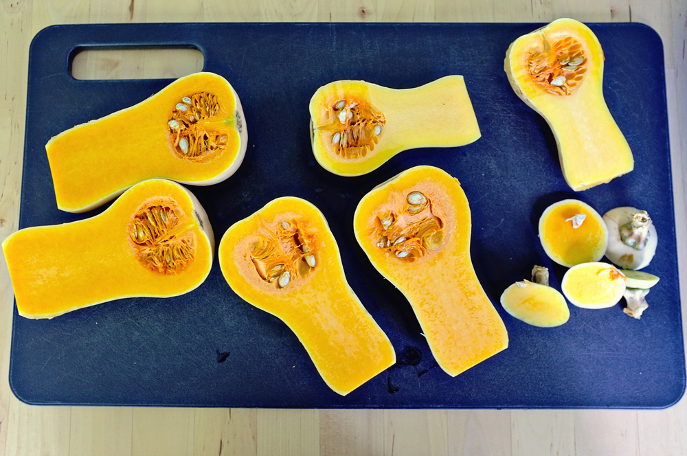 _butternutsquash_02.jpg