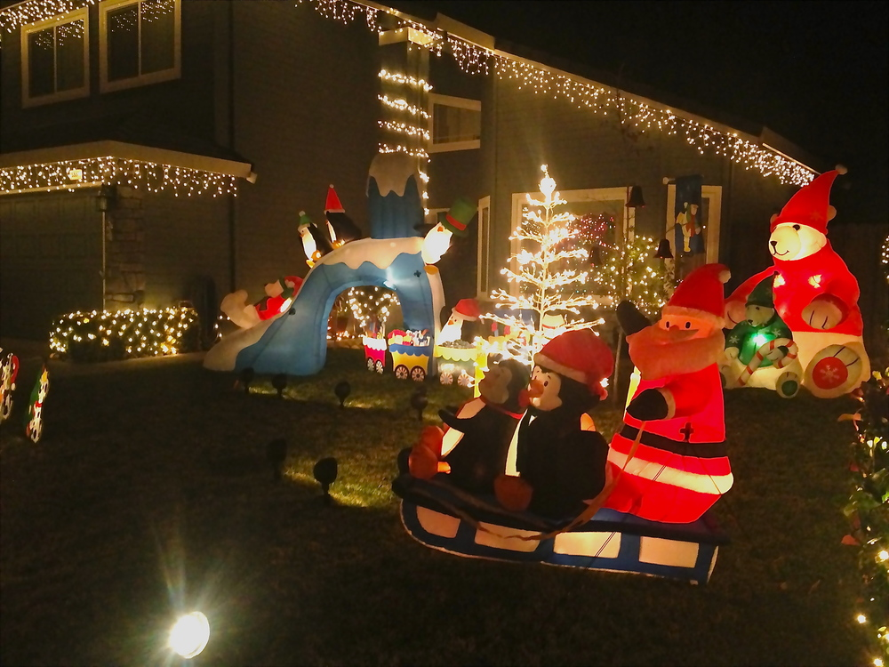 Santa and Penguins on the sleigh