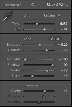 Lightroom basic panel settings