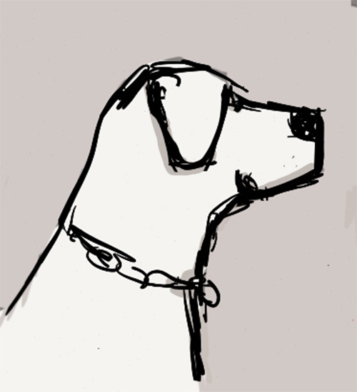 Quick sketch of the dog