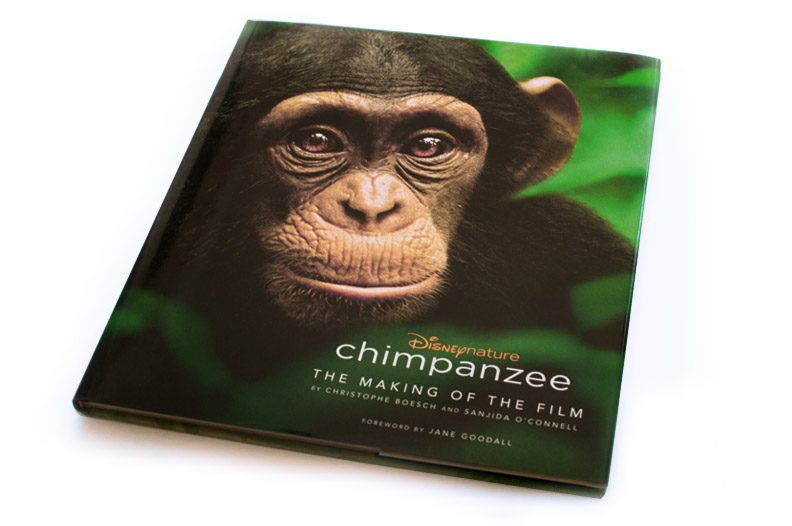 Disney Nature Chimpanzee