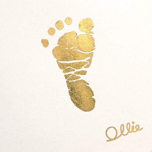 Ollie-footprint_1.jpg