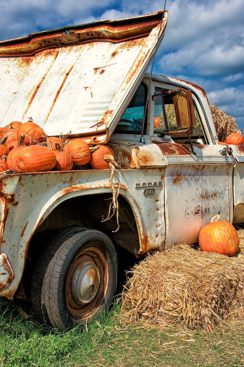 Dodge100pumpkins.jpg