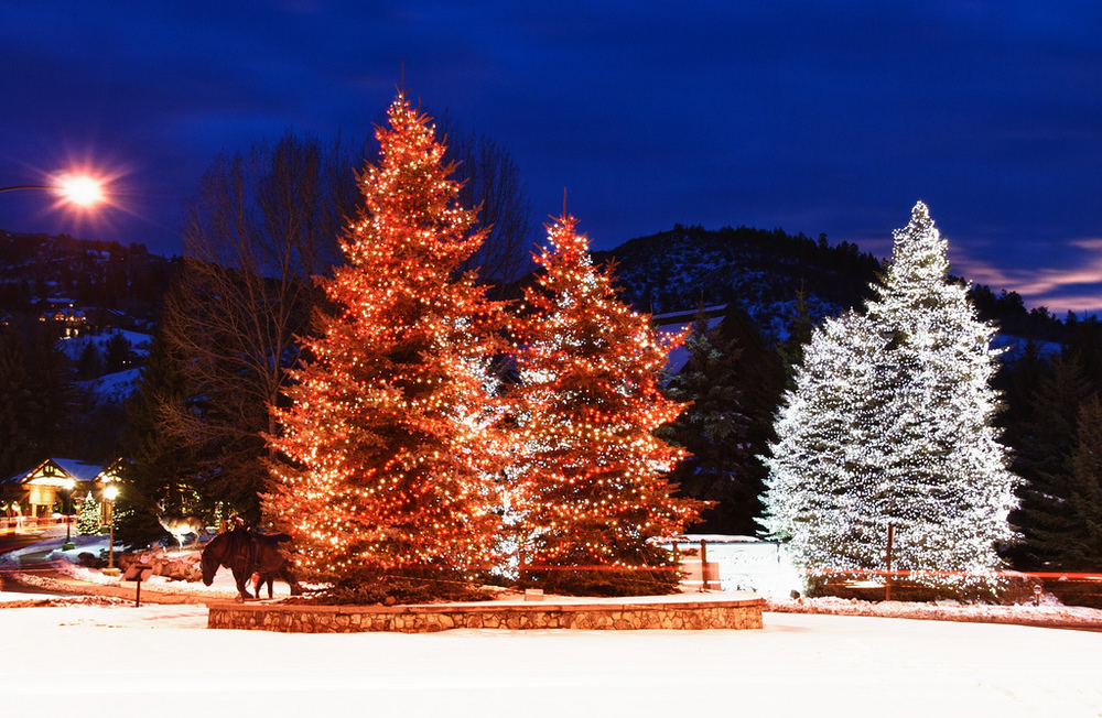 xmas-tree-lights-snow.jpg