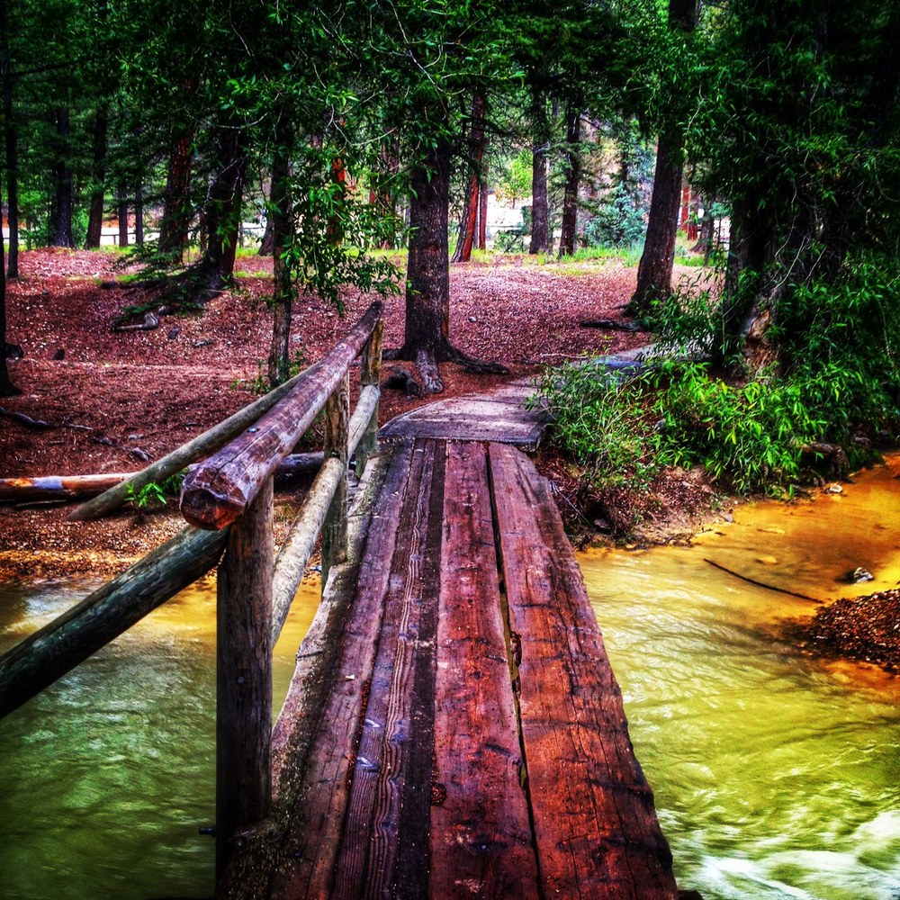 Crossing a creek - loved this little bridge!