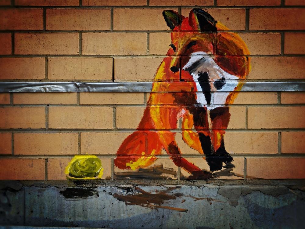 Sydney-Australia-graffti-fox.jpg