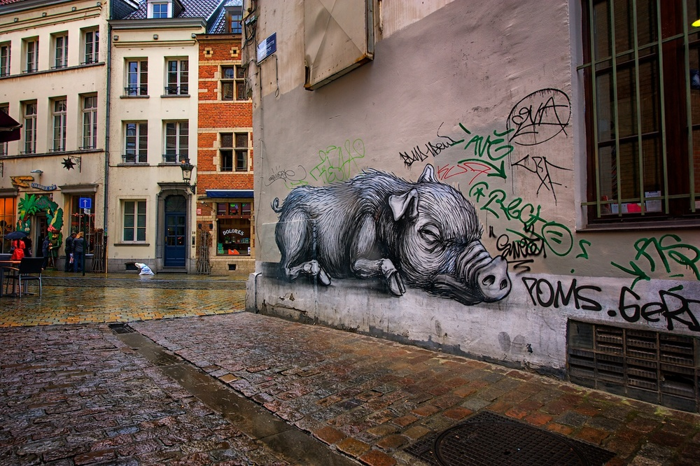 I love graffiti - except on my house - and found this while wandering some of the back streets near grand place.