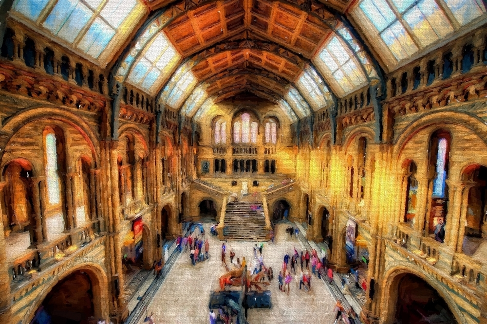 the natural history museum in london - such a heaven for photography!
