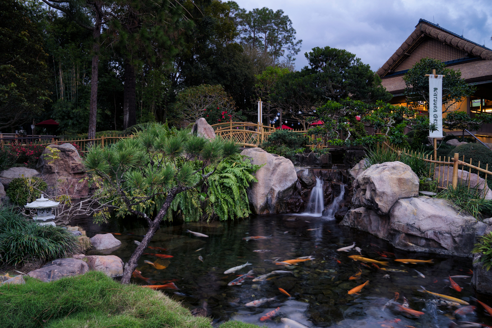 Another view from the Japanese Pavilion - this one of their koi pond.