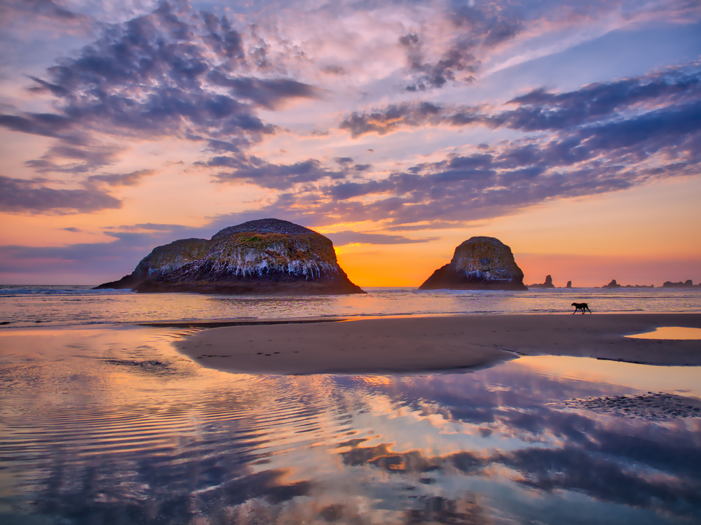 A stunning sunset in Cannon Beach, Oregon