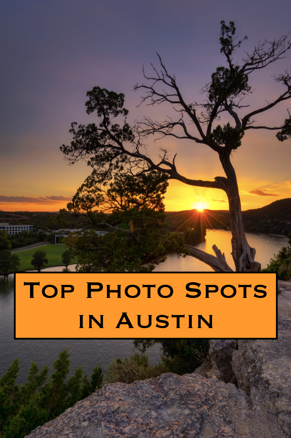Best Places To Adopt In New York City: Top Photo Spots In Austin