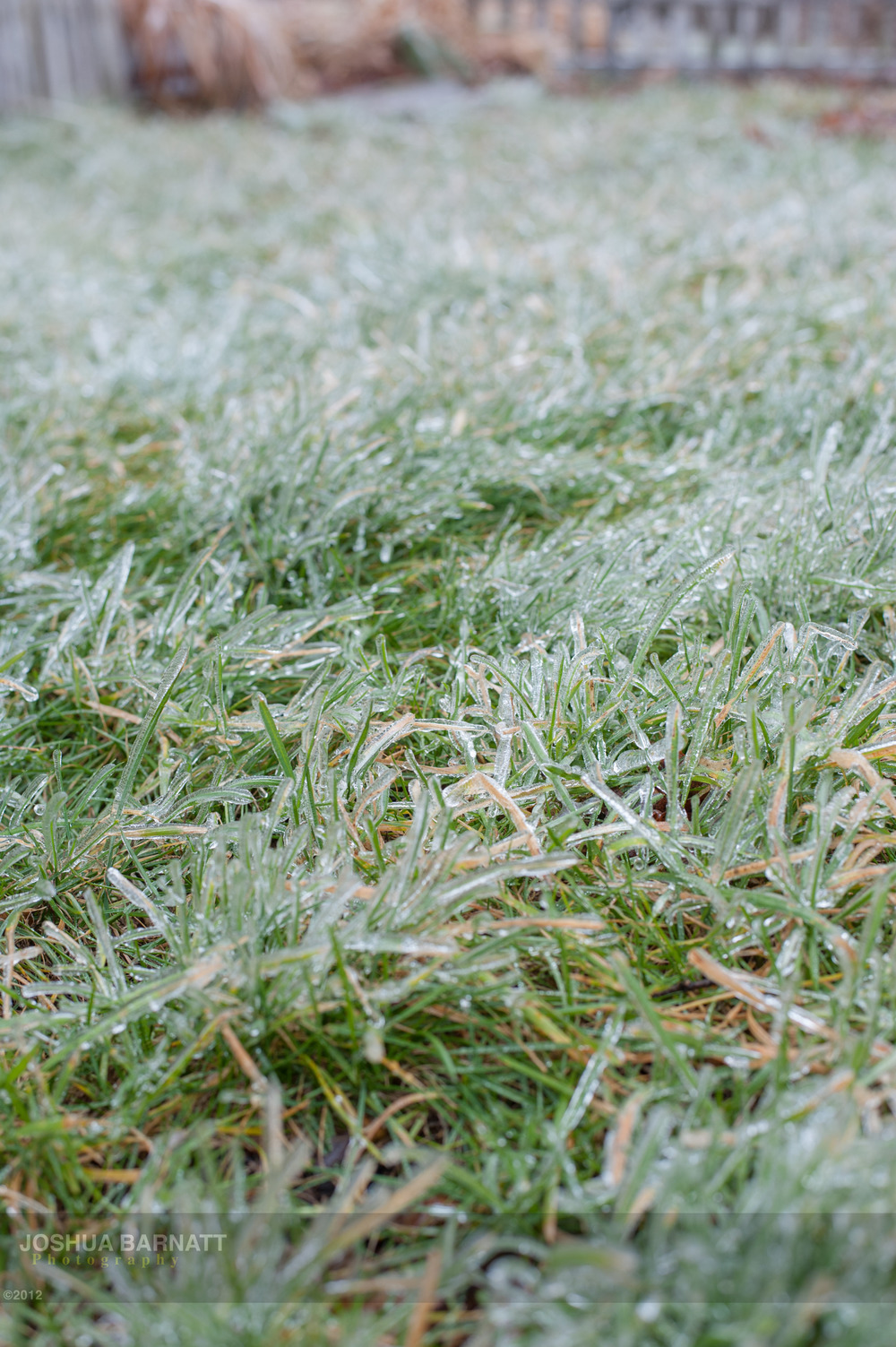 ice B-5746.jpg