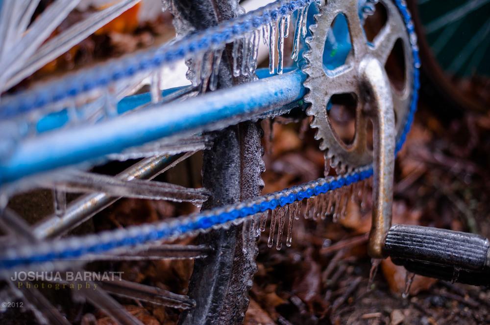 ice B-5783.jpg
