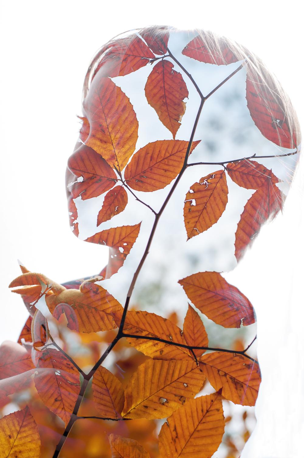 Ben Leaves.jpg