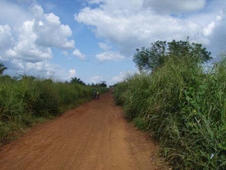 Dirt Road, Togo.JPG
