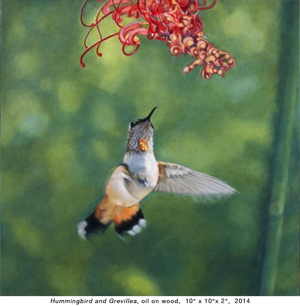 Humming Bird_V-2.jpg