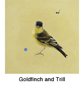 Gldfnch-Trill_thmb.jpg