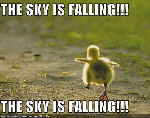 sky-is-falling.jpg