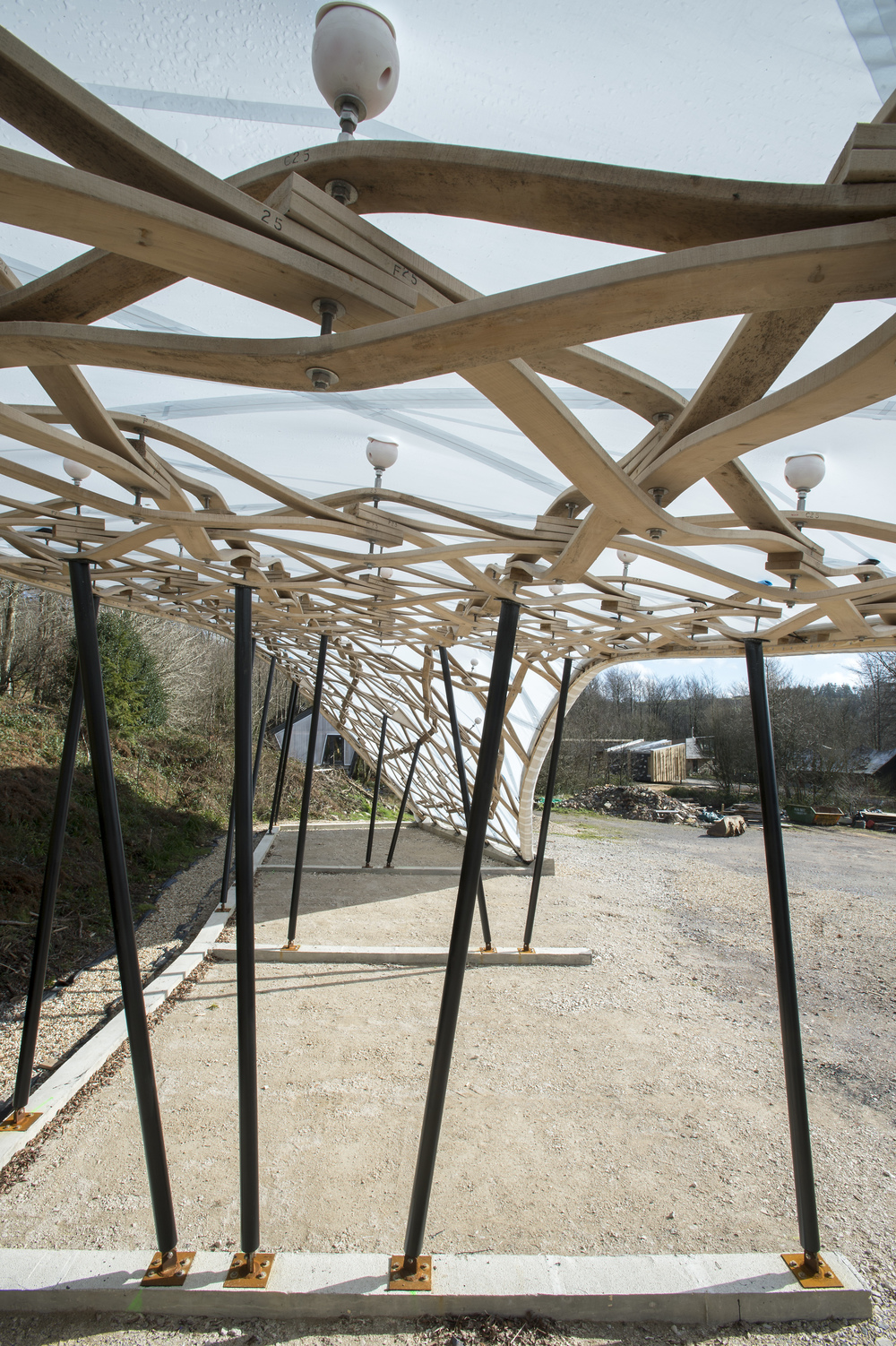 Hooke_Park_Design_&_Make_Timber_Seasoning_Shelter_©Valerie_Bennett_2014_02_22_0126.jpg