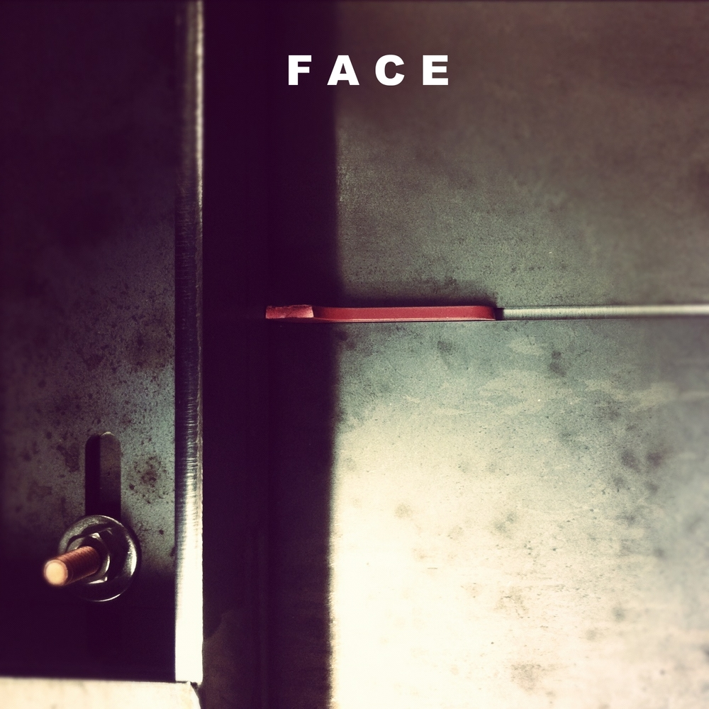 FACE Design and Fabrication : 2007 - 2009