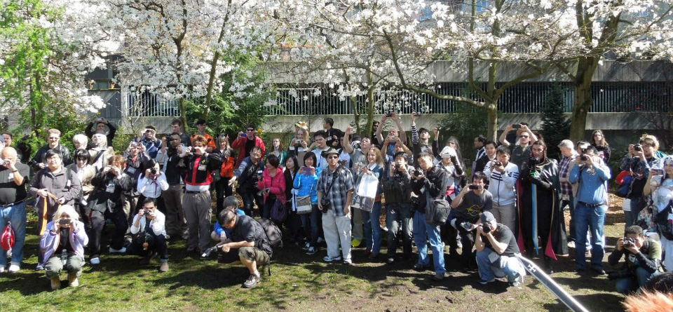 Fans and Photographers at the SAO community organized photoshoot