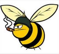 Goonswarm Bee