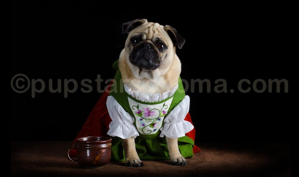 pugs of middle earth 6.png
