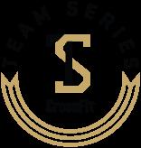 team_series_logo.png