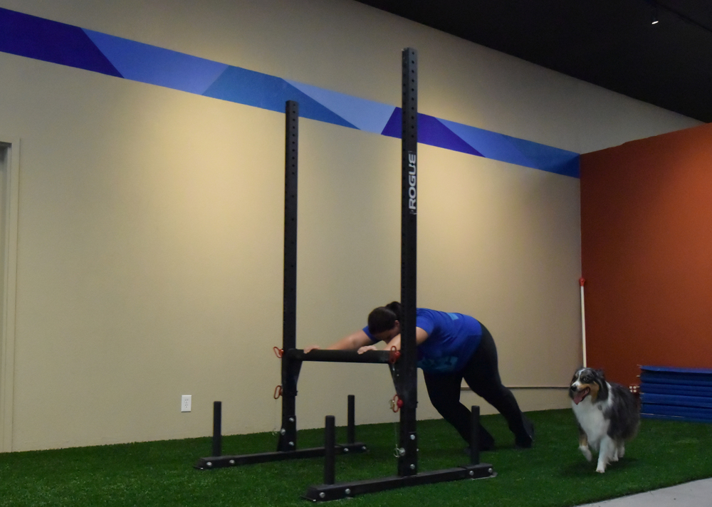 Tory and Mocha team up on a weekend partner WOD!