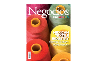 Negocios ProMéxico. LUSASUL profile. 2012