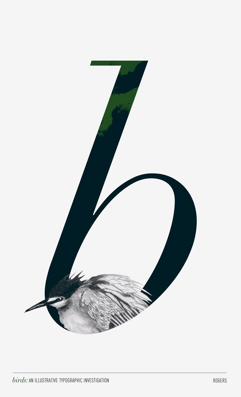 brogers-birds-b