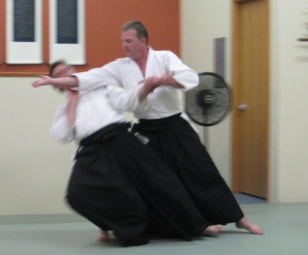 aikido summer'13 103 web.jpg