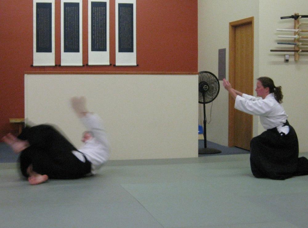 aikido summer'13 026 web.jpg
