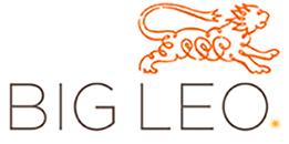 BIGLEO-logo.jpg