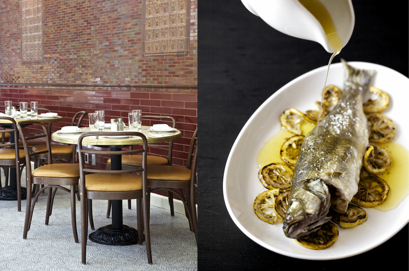 Grilled Fish Evi Abeler Food Photography