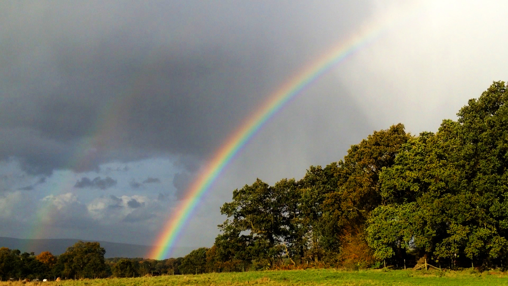 Jesse Waugh RAINBOW 2012 Alderley Edge