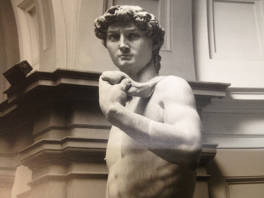 Michelangelo-David_Phallus.JPG