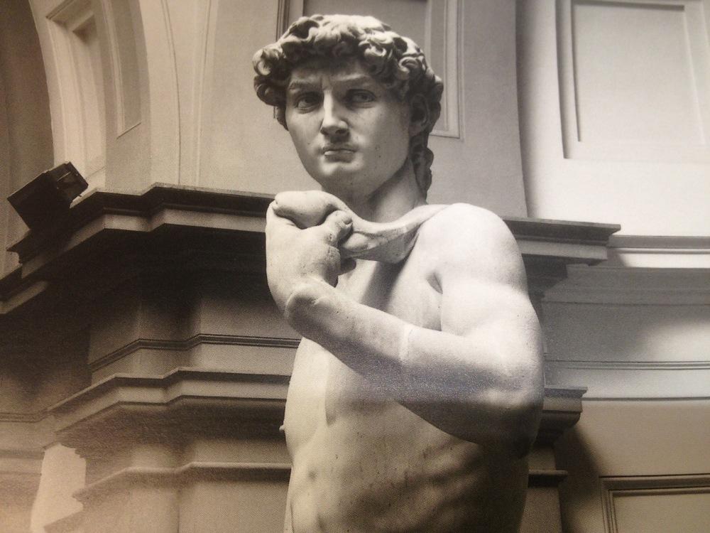 Michelangelo-David_Phallus.JPG