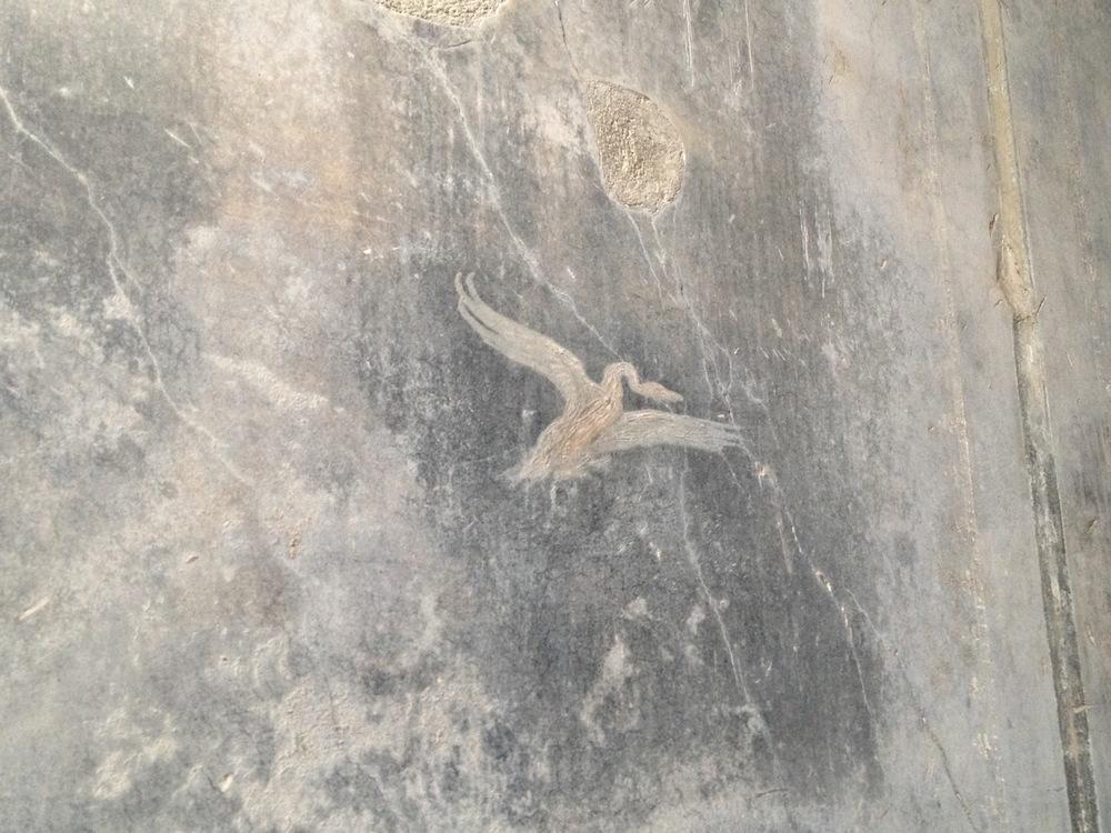 Pompeii-Iconography-jessewaugh.com-16.jpg
