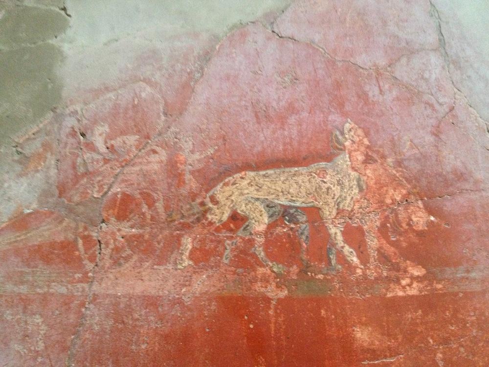Pompeii-Iconography-jessewaugh.com-20.jpg