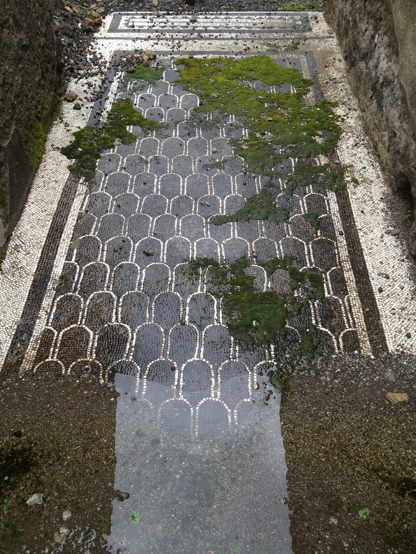 Pompeii-Iconography-jessewaugh.com-45-Mosaic-Floor.jpg